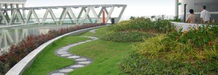Озеленение открытых террас