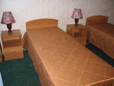 Гостиницы москвы эконом класса